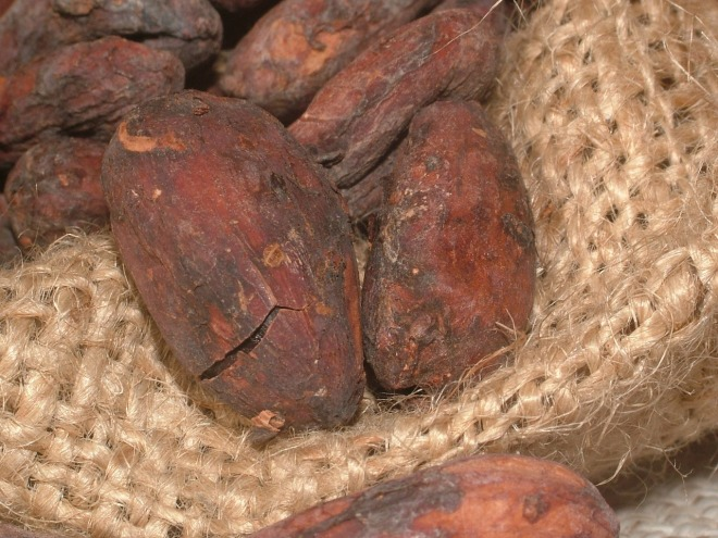 cacao-beans-91083_1280