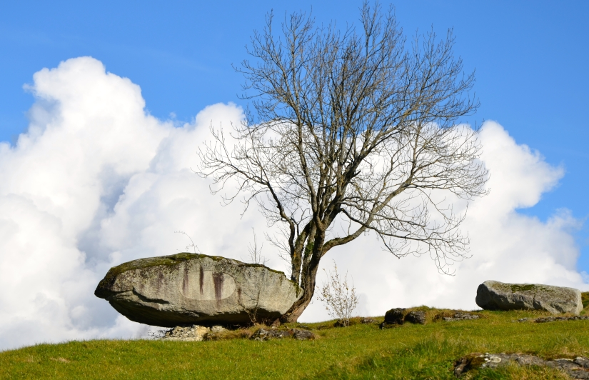 "Unsere Heimatgemeinde Morschach ist ""steinreich"" – geheimnisvolle Steinbrocken erzählen spannende Geschichten.   /    Our home community Morschach is ""vastly rich"" – mysterious rocks tell exciting stories."