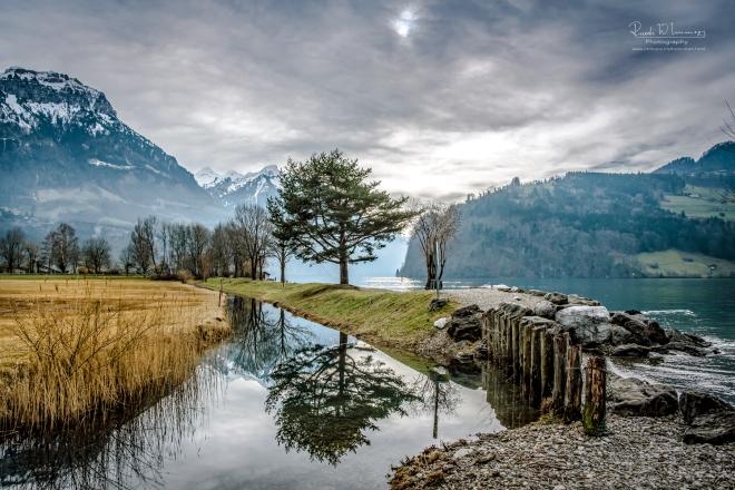 Brunnen-Hopfreben-Spiegelung-Baum_DSC3432-Signet-web