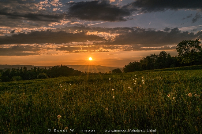 Luzern-Uttenberg-Sonnenuntergang-Lichtleinwiese_DSC0598-Signet-web