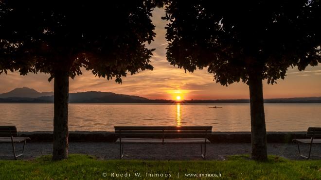Zugersee-Oberwil-Sonnenuntergang-Bänkli-Bäume_DSC5161-Signet-web