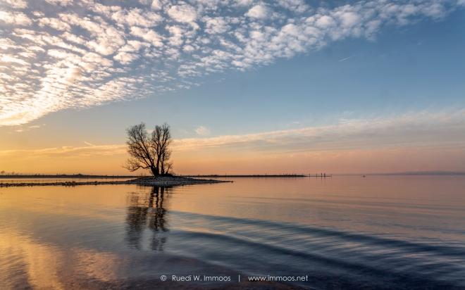 Gaissau-Bodensee-Insel-Abendlicht-Wolken-und-Wellen-Eckläufer-Signet-web