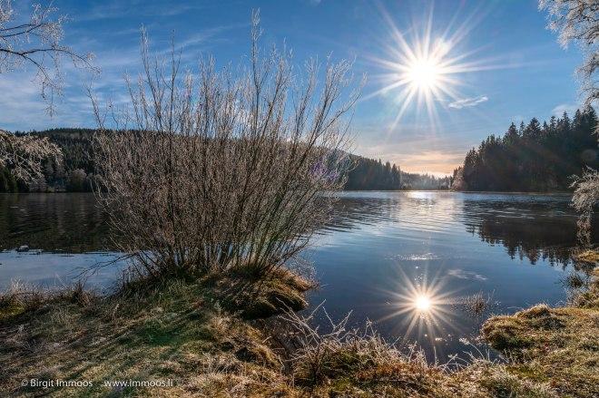 Schwarzwald_Windgfällweiher_Sonnensgerne_DSC1637-a-Signet-web