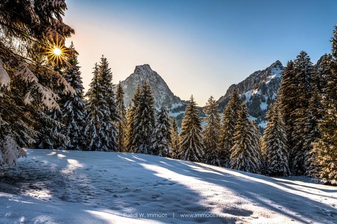 Alpthal-Brunni-Mythen-Blendenstern-durch-die-Bäume-Wintertag-_DSC0838-a-Signet-web