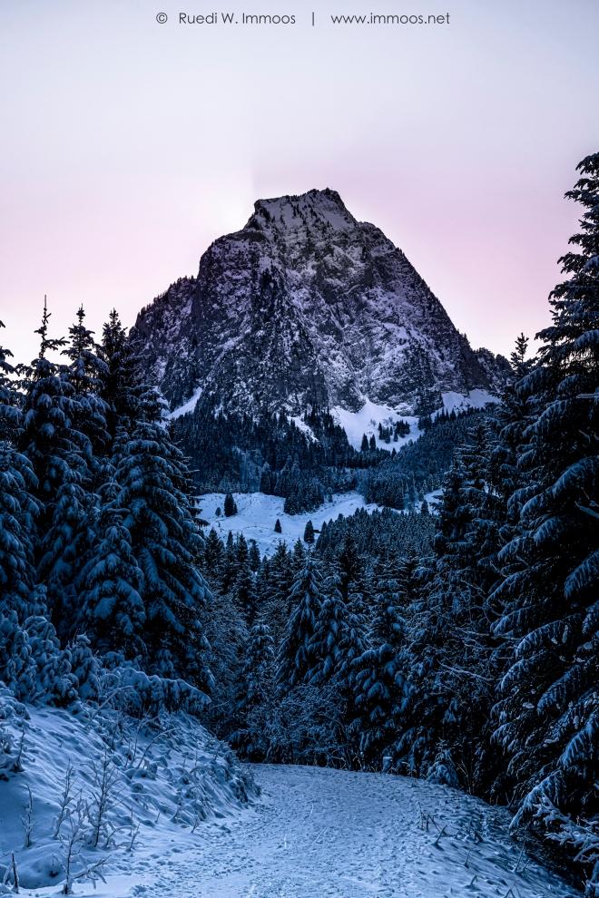 Brunni-Alpthal-Grosser-Mythen-Hochformat-rosa_DSC0851-a-Signet-web
