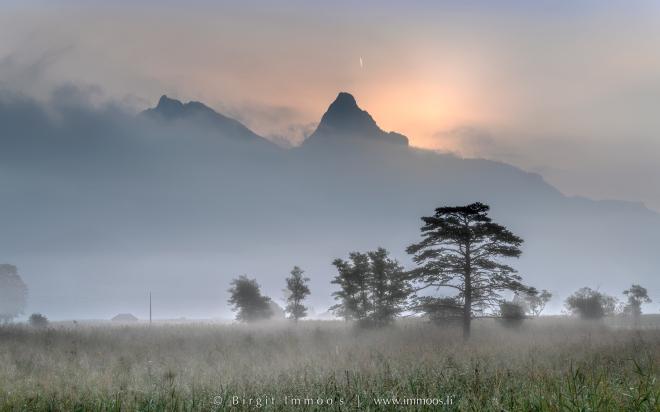 Mythen-Segel-Nebel-drei-Bäume_DSC8526-Signet-web