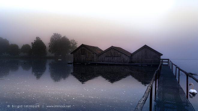 Bayern-Kochelsee-Schlehdorf-drei-Fischerhütten-im-Nebellicht-pastell-mit-Schwan_DSC8666-a-Signet-web