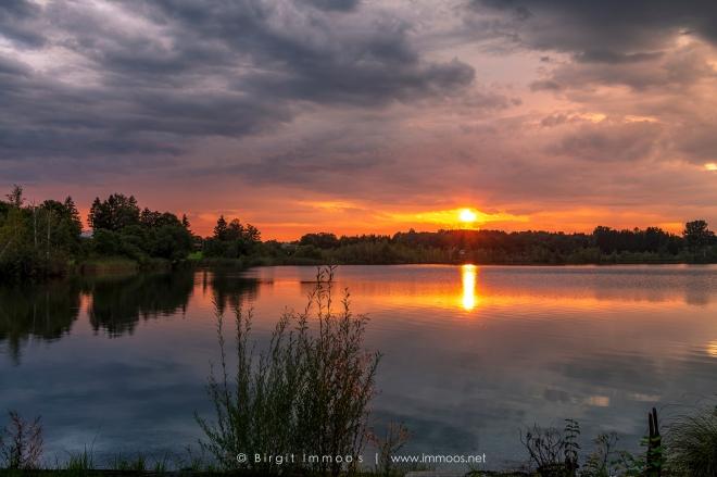 Bayern-Riegsee-Sonnenuntergang-Sonne-botanische-Reihe_DSC8752-a-Signet.web