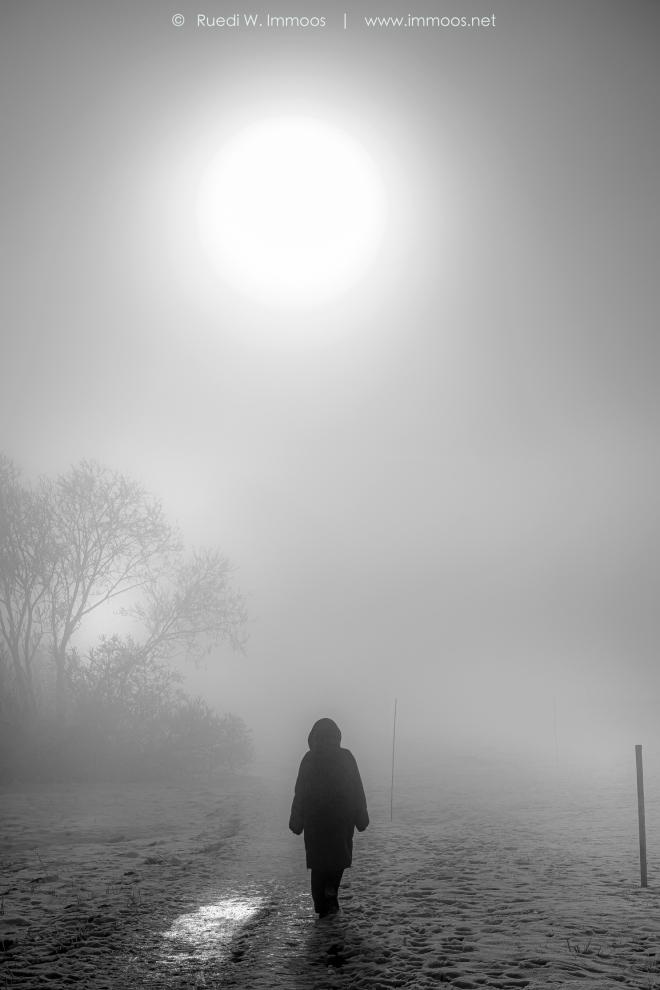Nebelwandererin-(Birgit)-Z50_0008-Signet-web