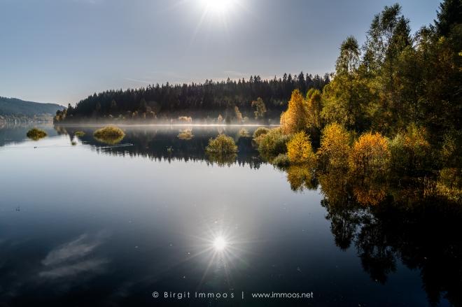 Schluchsee-spiegelung-goldener-Herbst-von-Brücke-Schwarzwasserweiher_DSC8808-a-Signet-web